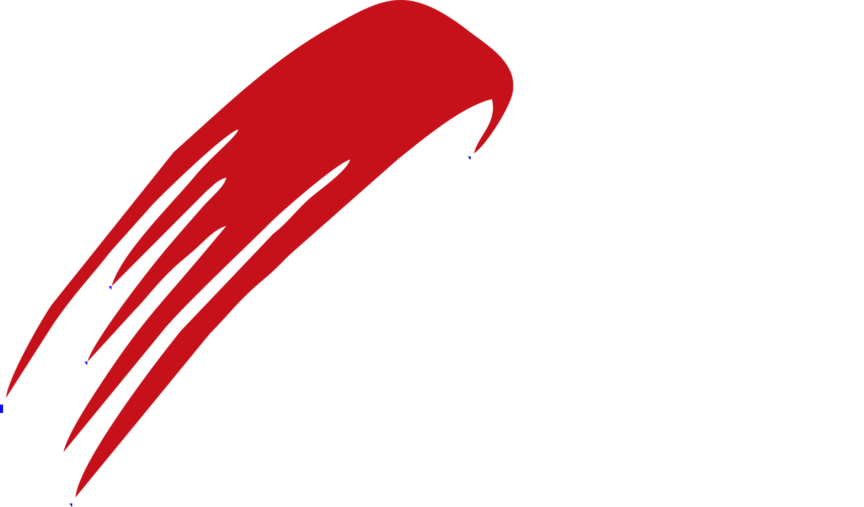 Bahria sports city logo