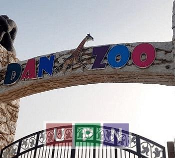Tour de DanZoo