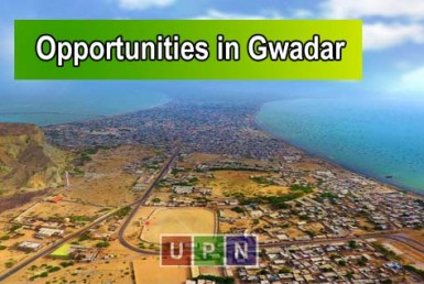 Short Term Investment Opportunities in GwadarShort Term Investment Opportunities in Gwadar