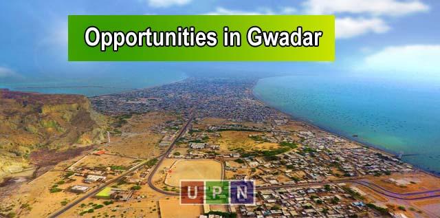 Short Term Investment Opportunities in Gwadar